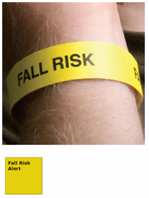 Tyvek Fall Risk Alert Wristbands