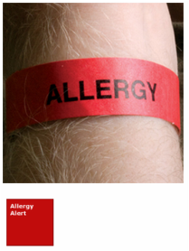 Allergy Tyvek Wristbands